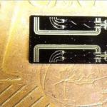 El mercado de FOREX chip cuántico