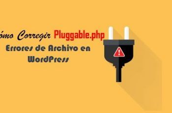 Errores Pluggable.php