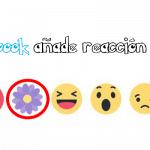 Correo electrónico de Gmail reacción floral