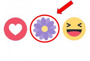 Reacción floral en Facebook