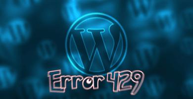 Hackear bypass google error 429 en WordPress
